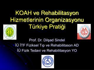 KOAH ve Rehabilitasyon Hizmetlerinin Organizasyonu T rkiye Pratigi