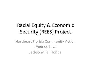 Racial Equity  Economic Security REES Project