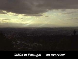 GMOs in Portugal   an overview