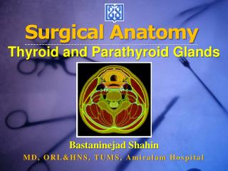 Surgical Anatomy  Thyroid and Parathyroid Glands