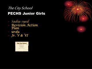 The City School PECHS Junior Girls