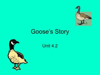 Goose s Story