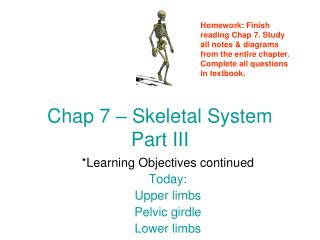 Chap 7   Skeletal System Part III