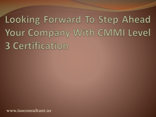 CMMI level 3 Documentation for CMMI Maturity Models
