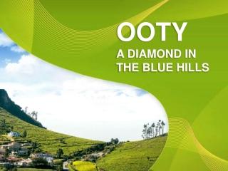 Find Properties in Ooty Effortlessly