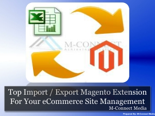 Best Functional Import / Export Magento Extension For Your S