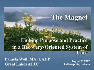 The Magnet   Linking Purpose and Practice in a Recovery-Oriented System of Care