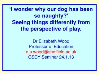 I wonder why our dog has been so naughty   Seeing things differently from the perspective of play.   Dr Elizabeth Wood