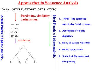 Approaches to Sequence Analysis