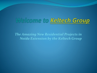Top Real Estate Developers in Noida Extension