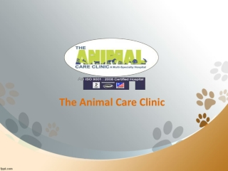 Animal care clinic in Hyderabad