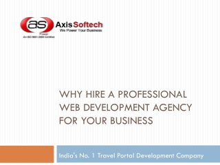 Why Hire a Professional Web Development Agency for Your Busi