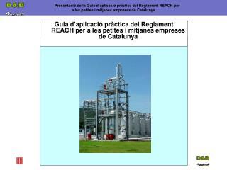 Guia d aplicaci  pr ctica del Reglament REACH per a les petites i mitjanes empreses de Catalunya