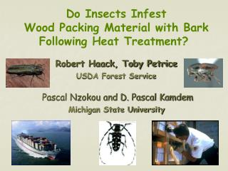 Do Insects Infest Wood Packing Material with Bark Following Heat Treatment