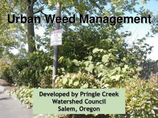 Developed by Pringle Creek Watershed Council Salem, Oregon
