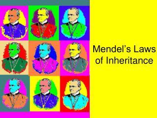 Mendel s Laws of Inheritance