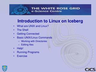 Introduction to Linux on Iceberg