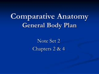 Comparative Anatomy General Body Plan