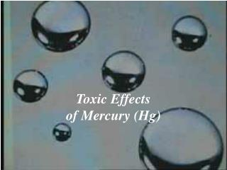 Toxic Effects  of Mercury Hg