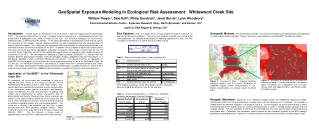 GeoSpatial Exposure Modeling in Ecological Risk Assessment:  Whitewood Creek Site William Thayer1, Dale Hoff2, Philip Go