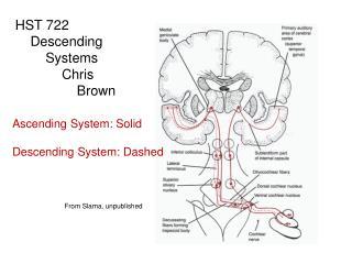 HST 722      Descending          Systems     Chris         Brown