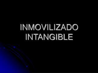 INMOVILIZADO INTANGIBLE