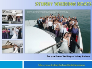 sydney harbour wedding boat