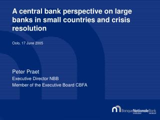 A central bank perspective on large banks in small countries and crisis resolution  Oslo, 17 June 2005