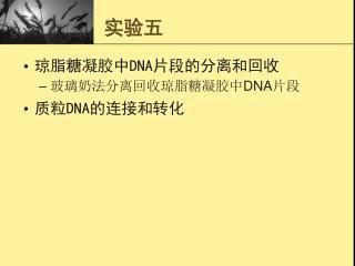 DNA DNA DNA