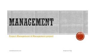 Management Project Assignment Help