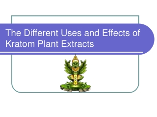 The Different Uses and Effects of Kratom Plant Extracts