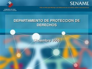 DEPARTAMENTO DE PROTECCION DE DERECHOS   Diciembre 2008
