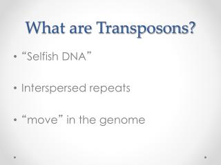 What are Transposons