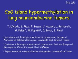 CpG island hypermethylation in lung neuroendocrine tumors