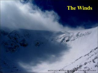 The Winds