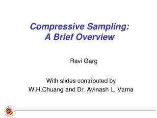 Compressive Sampling: A Brief Overview