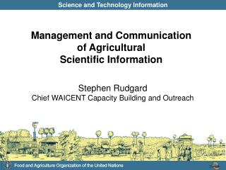 Stephen Rudgard Chief WAICENT Capacity Building and Outreach