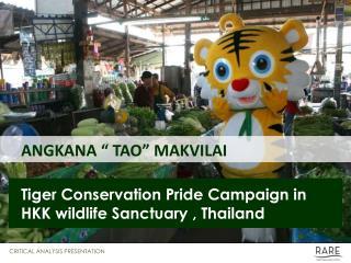 ANGKANA   TAO  MAKVILAI    Tiger Conservation Pride Campaign in HKK wildlife Sanctuary , Thailand