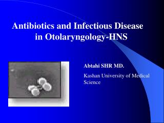 Antibiotics and Infectious Disease                                        in Otolaryngology-HNS