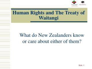 Human Rights and The Treaty of Waitangi