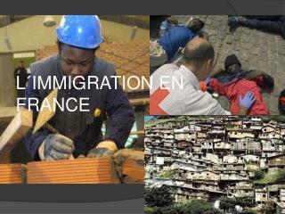 L IMMIGRATION EN FRANCE