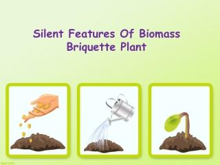 Silent Features Of Biomass Briquette Plant