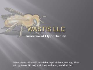 WASTis LLC
