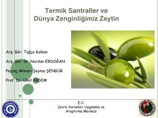 Termik Santraller ve D nya Zenginligimiz Zeytin