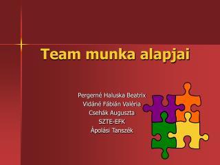 Team munka alapjai