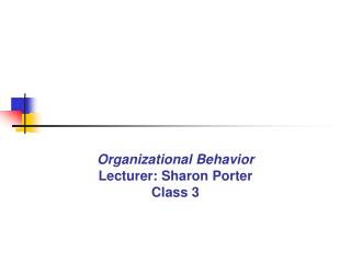 Organizational Behavior Lecturer: Sharon Porter Class 3