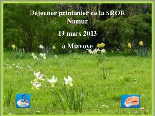 D jeuner printanier de la SROR Namur 19 mars 2013    Miavoye