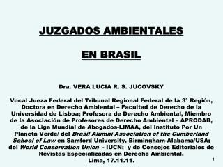 JUZGADOS AMBIENTALES  EN BRASIL      Dra. VERA LUCIA R. S. JUCOVSKY  Vocal Jueza Federal del Tribunal Regional Federal d