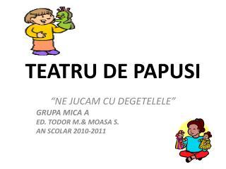 TEATRU DE PAPUSI