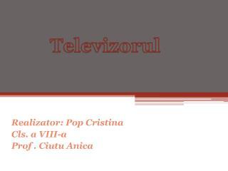 Realizator: Pop Cristina Cls. a VIII-a  Prof . Ciutu Anica